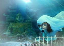 Escape in a Dream by Viola Krupova