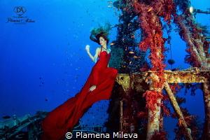 Impression in red by Plamena Mileva