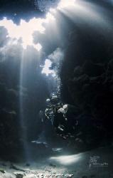 Model: Unterwasserkatze   Ort: Ägypten Marsa A.  Nikon ... by Konstantin Killer