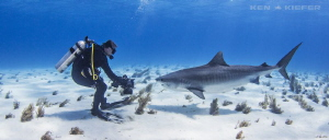 Photographer working for the right angle with a TigerShark by Ken Kiefer