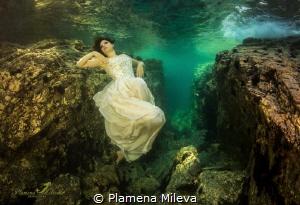 Dreaming by Plamena Mileva