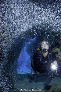 """""""The Tube"""" A Diver takes in the magical movements of the... by Chase Darnell"""