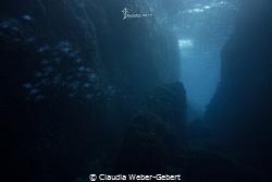ambient light - les mèdes by Claudia Weber-Gebert