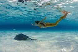 Chasing stingrays by Nadya Kulagina