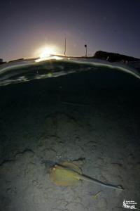 Sunset in Marsa Nakari :-D by Daniel Strub