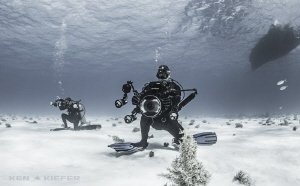 Gotta be in position and ready for when the TigerSharks m... by Ken Kiefer