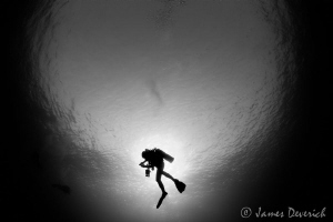 Diver eclipse / Silhouette and Snell's window. by James Deverich