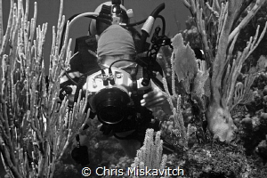 Diver shooting images by Chris Miskavitch