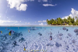 Tikehau lagoon, when clear water enter in the lagoon... by Cangemi Paul