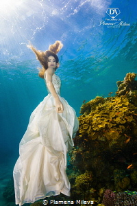 Aphrodite in the coral garden by Plamena Mileva