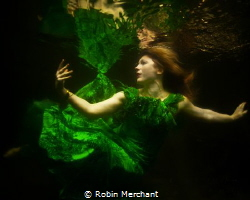 I tried using a mirror underwater to bounce extra light o... by Robin Merchant