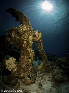 Getting close to the end of our dive, I found this anchor... by Patricia Sinclair
