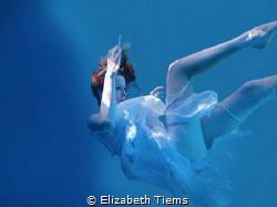 Taken in a pool, using scuba gear. Photoshop used to get ... by Elizabeth Tiems