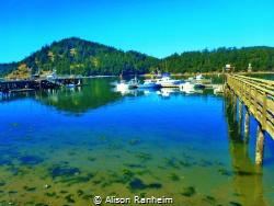 Puget Sound, Washington by Alison Ranheim