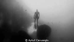 Zenobia by Aykut Cavusoglu