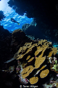 One of the entrances at Fury Shoal. Manual white balance,... by Taner Atilgan