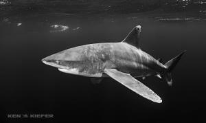 Oceanic in the dark by Ken Kiefer