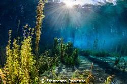 [:b:]Like a  fairytale.[:/b:] San Giorgio Liri's lake. by Francesco Pacienza