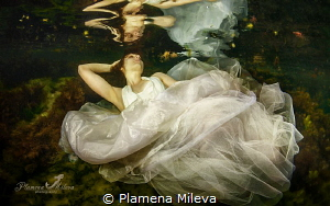 """White dream in the Dark water"" by Plamena Mileva"