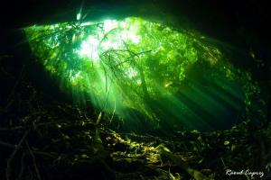 Tajma Ha cenote by Raoul Caprez