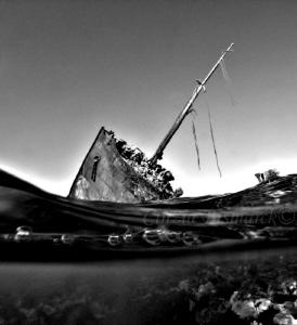 Wreck of Maria Schroeder B/W  Nabq area Sharm El Sheikh ... by Cinzia Bismarck