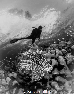 The B&W challenge by Steven Miller