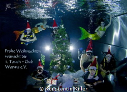 Merry Christmas wishes you the 1. diving club Worms by Konstantin Killer