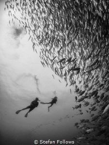 """Dream in a pragmatic way."" Aldous Huxley. Sail Rock, Tha... by Stefan Follows"