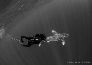 Freediver enjoying her new companion OWT by Ken Kiefer