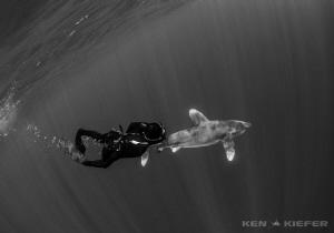 Freediver enjoying her new companion OWT by Ken Kiefer