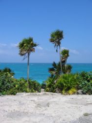 Taken on the coast of Cozumel at Tulum by Stephanie Puttre