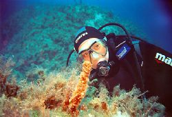 Diver pose at crystal-clear waters of Zakinthos. by Nicholas Samaras