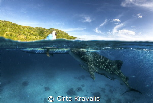 Whale shark,Santander,Philippines by Girts Kravalis