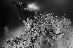 Motorcycle - Motorcycle outside Valfiorita Ship wreck - M... by Marco Bartolomucci
