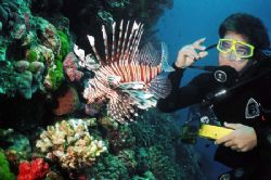 Gus and a lion fish. by Jess Guberman