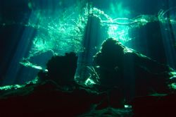 sun light in the cenote Chac Mool by Alessandro Reato