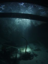 Belize's newest wreck, we found a small cargo carrying bo... by Martin Spragg