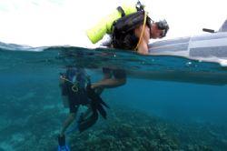divers getting back on the boat at las aves by Brenda Van Gestel