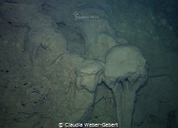"""""""La méduse"""" - """"the jellyfish""""  Limestone-formation in a... by Claudia Weber-Gebert"""