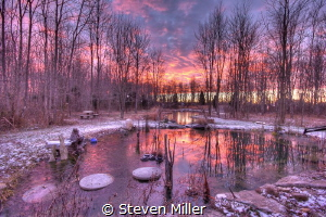 Dawn pool by Steven Miller