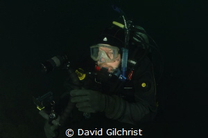 Searching for subject. Diver with Sony Video rig at the W... by David Gilchrist