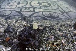 Mankind tirelessly is working to preserve it, however, on... by Gaetano Gargiulo