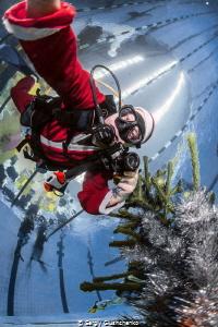 New Year underwater. by Sergiy Glushchenko