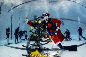 Christmas picture. by Sergiy Glushchenko