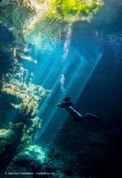 The position of our diveguide David and the lightrays fro... by Sabrina Inderbitzi