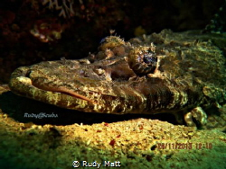Crock..