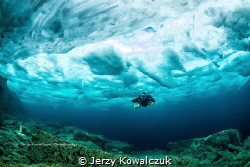 I have shot this photo in Tobermory Ontario. Water temp.w... by Jerzy Kowalczuk
