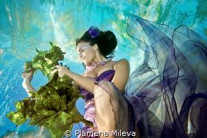 Knitting a wreath by Plamena Mileva