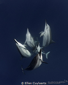 """Acceptance""