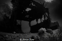 on the wreck of the doc polson in grand cayman 